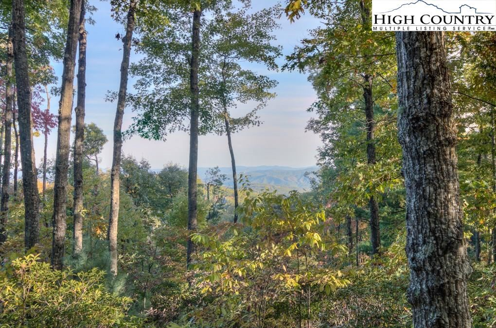 Photo for 368 Reynolds Parkway, Boone, NC 28607 (MLS # 220059)
