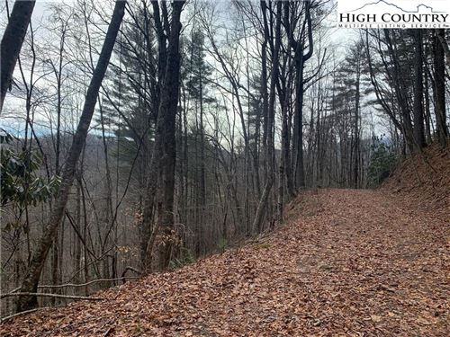 Tiny photo for 87 & 88 Vista Lane, Boone, NC 28607 (MLS # 228087)