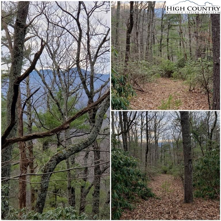 Photo for TBD Nightingale Lane, Blowing Rock, NC 28605 (MLS # 220236)