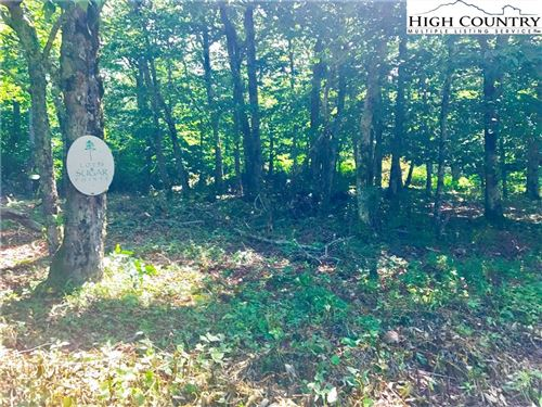 Tiny photo for Lot 96 Cloud Springs Drive, Sugar Mountain, NC 28604 (MLS # 228303)