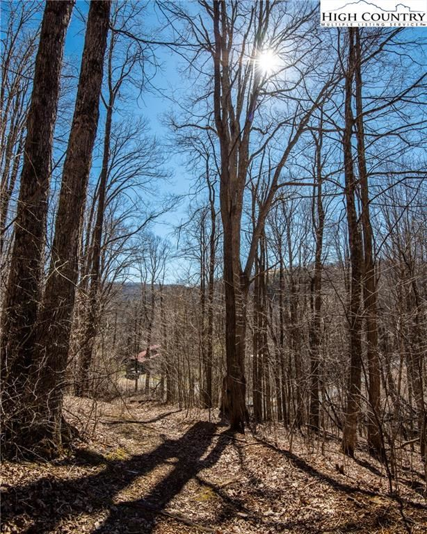 Photo for T-8 & T-9 Jesse Brown Road, Boone, NC 28607 (MLS # 228328)