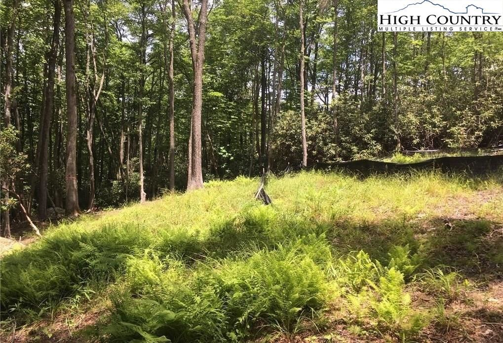 Photo for Lot 28 Twin Branches Road, Blowing Rock, NC 28605 (MLS # 232339)