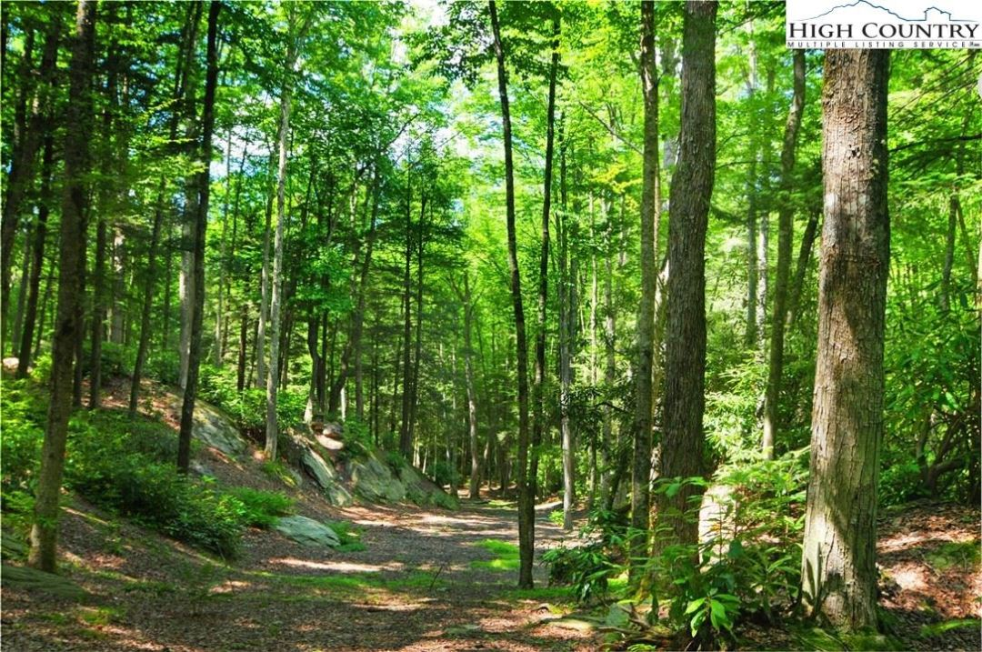 Photo for TBD Hickory Knoll, Banner Elk, NC 28604 (MLS # 228376)