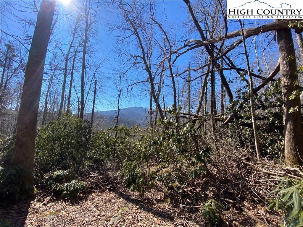 Photo for TBD Tweetsie Lane, Banner Elk, NC 28604 (MLS # 228420)