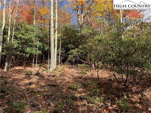 Tiny photo for 216 Oak Road, Beech Mountain, NC 28604 (MLS # 226487)