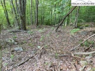 Photo for 103 and 105 Beadwood Lane, Beech Mountain, NC 28604 (MLS # 233587)