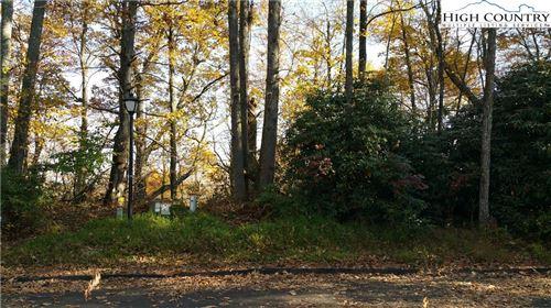 Tiny photo for Lot 41 Plenty Wood Drive, Blowing Rock, NC 28605 (MLS # 226622)