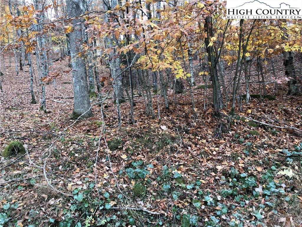Photo for 107 Lakeledge Circle, Beech Mountain, NC 28604 (MLS # 226671)