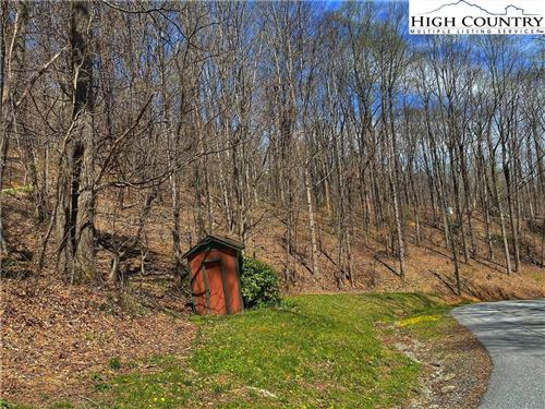 Photo of TBD Grandfather Farms Road, Banner Elk, NC 28604 (MLS # 229673)