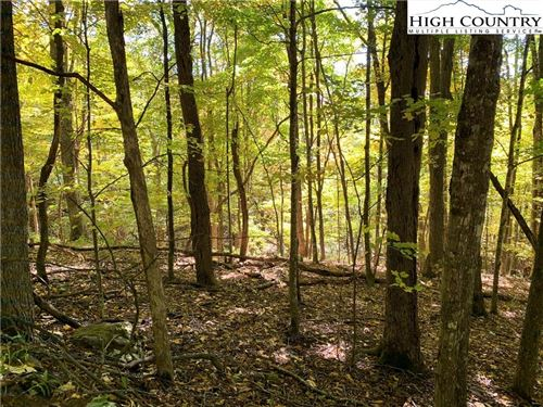 Photo of Lots 9 & 10 Thorncliff Drive, Seven Devils, NC 28604 (MLS # 224717)