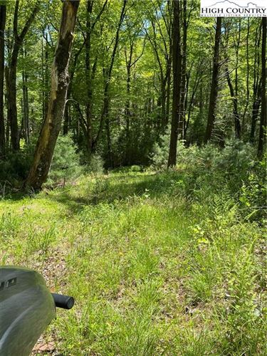 Tiny photo for TBD Darnell Woodie Road, Laurel Springs, NC 28644 (MLS # 230827)