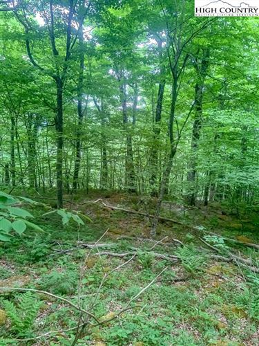 Tiny photo for TBD Spice Bottom Trail, Banner Elk, NC 28604 (MLS # 230842)