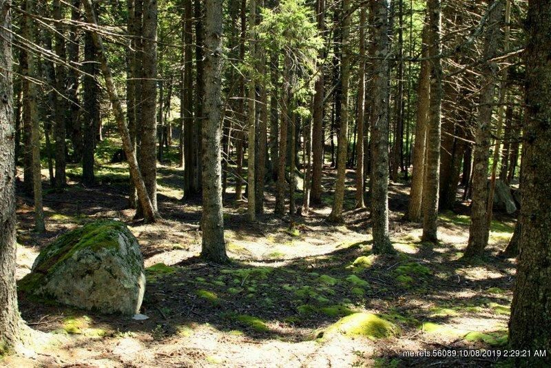Photo for Lot 4 Forest Way, Swans Island, ME 04685 (MLS # 1410186)