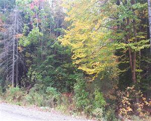 Tiny photo for M3 L49-C Bush Road, Canaan, ME 04924 (MLS # 1329294)