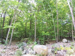 Photo of Lot 4 Loop RD, Otisfield, ME 04270 (MLS # 1365340)