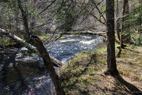 Photo of 0 Upper Long Pond Road, Bucksport, ME 04416 (MLS # 1489390)