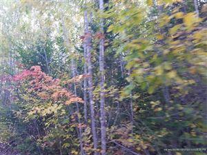 Tiny photo for 517 Tourtelotte Ridge RD, Mariaville, ME 04605 (MLS # 1373428)