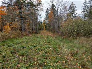 Photo of Lot 10 Spring Hill Acres, Amity, ME 04471 (MLS # 1402481)