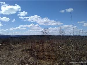 Tiny photo for 90 Ellingwood RD, Paris, ME 04281 (MLS # 1345567)