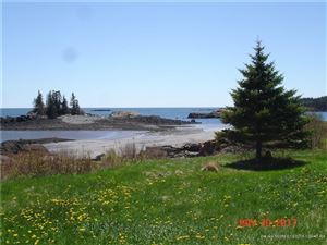 Photo of 14 Wallace Cove Road, Lubec, ME 04652 (MLS # 1404603)