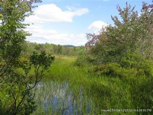 Tiny photo for 0 Rt 5, Albany Township, ME 04217 (MLS # 1325975)