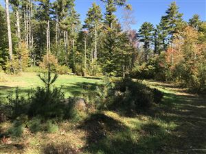 Tiny photo for Lot 14J Deer Crossing Road, Bristol, ME 04539 (MLS # 1406985)