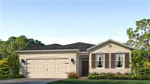 Photo of 1141 MANZANAR PLACE, WESLEY CHAPEL, FL 33543 (MLS # T3187115)