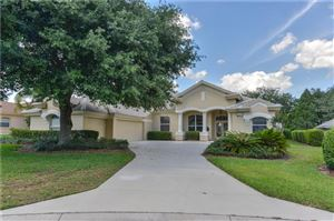 Photo of 34539 MERION COURT, DADE CITY, FL 33525 (MLS # W7811493)