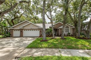 Photo of 1708 COUNTRY TRAILS DRIVE, SAFETY HARBOR, FL 34695 (MLS # T3122607)