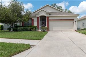 Photo of 12115 LOBLOLLY PINE DRIVE, NEW PORT RICHEY, FL 34654 (MLS # U8055667)