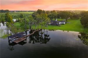 Photo of 5005 W LAKE BUTLER RD, WINDERMERE, FL 34786 (MLS # O5805695)