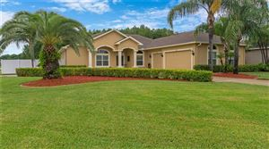 Photo of 6421 ALCESTER DRIVE, NEW PORT RICHEY, FL 34655 (MLS # A4440789)