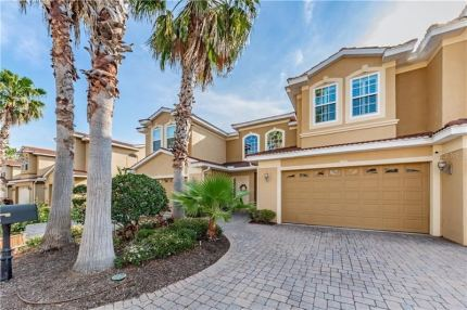 Photo for 1385 RIBOLLA DRIVE, PALM HARBOR, FL 34683 (MLS # U8078803)
