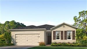 Photo of 12551 EASTPOINTE DRIVE, DADE CITY, FL 33525 (MLS # T3151934)