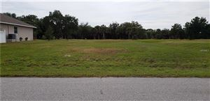 Photo of 77 MARK TWAIN LANE, ROTONDA WEST, FL 33947 (MLS # C7407947)