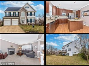 Photo of 600 RED CT, FREDERICK, MD 21703 (MLS # FR10164145)