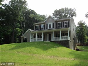 Photo of 16398 RAVEN ROCK RD, SABILLASVILLE, MD 21780 (MLS # FR9591152)