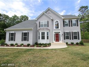 Photo of 509 FAIR HAVENS LN, FREDERICKSBURG, VA 22406 (MLS # ST9995461)