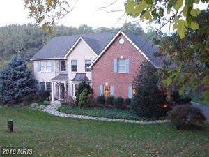 Photo of 6849 RUNNING SPRINGS CT, FREDERICK, MD 21703 (MLS # FR10131545)