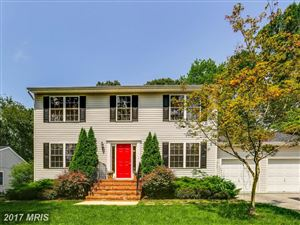 Photo of 1016 DOCKSER DR, CROWNSVILLE, MD 21032 (MLS # AA10060602)