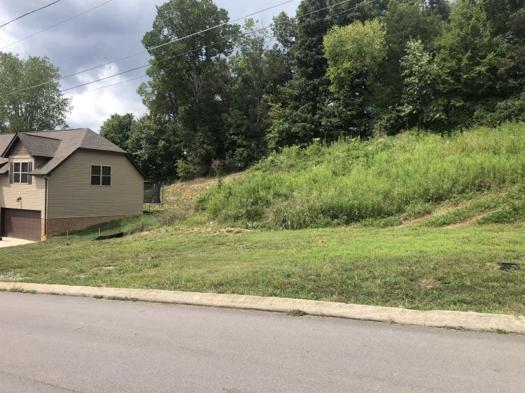 Photo for 0 Chisolm Trail, Goodlettsville, TN 37072 (MLS # 2289253)