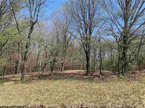 Photo of Lot 37 Hawthorne Pointe, Dryfork, WV 26293 (MLS # 10137201)