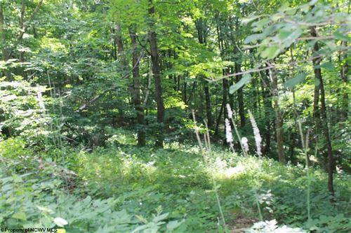 Photo of Lot 14 E Meadows Road, Harman, WV 26270 (MLS # 10139415)