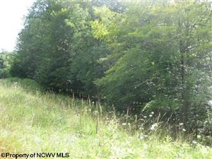 Photo of Lot 2 Northlake Development Drive, Davis, WV 26260 (MLS # 10110786)