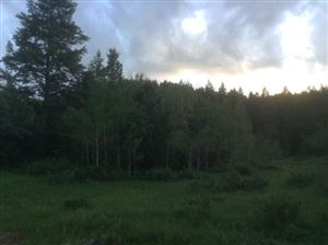 Photo of 00 Racoon, Lava Hot Springs, ID 83246 (MLS # 557814)