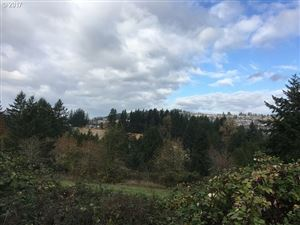 Photo of 14400 SE 162ND AVE, Clackamas, OR 97015 (MLS # 17180123)