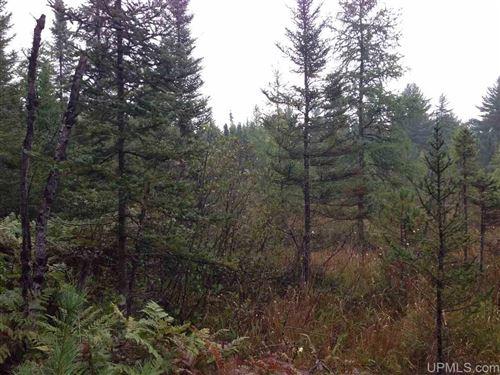 Photo of TBD Camp 5 Rd #SE1/4-NE1/4, Crystal Falls, MI 49920 (MLS # 1120057)