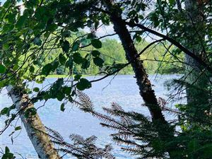 Photo of TBD River Forest Tracts #14, Florence, WI 54121 (MLS # 1114107)