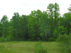 Photo of TBD Co Rd 581, Felch, MI 49831 (MLS # 1108421)