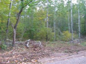 Photo of TBD Campbell #PCL 5, Florence, WI 54121 (MLS # 1112587)
